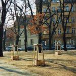 Weberplatz – Potsdam – Babelsber